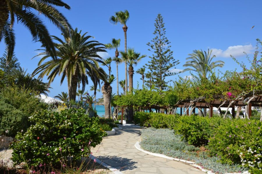 nissi beach, juzny cyprus, letna dovolenka na juznom cypre, letna dovolenka pri mori