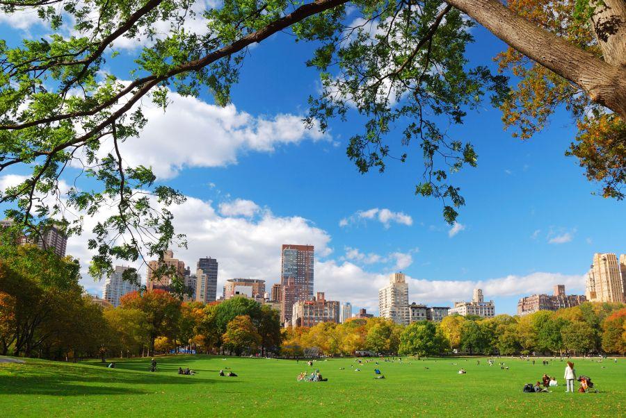 central park, new york, poznavaci zajazd, poznavacie zajazdy, usa, satur, poznavacky s detmi, zajazdy pre deti