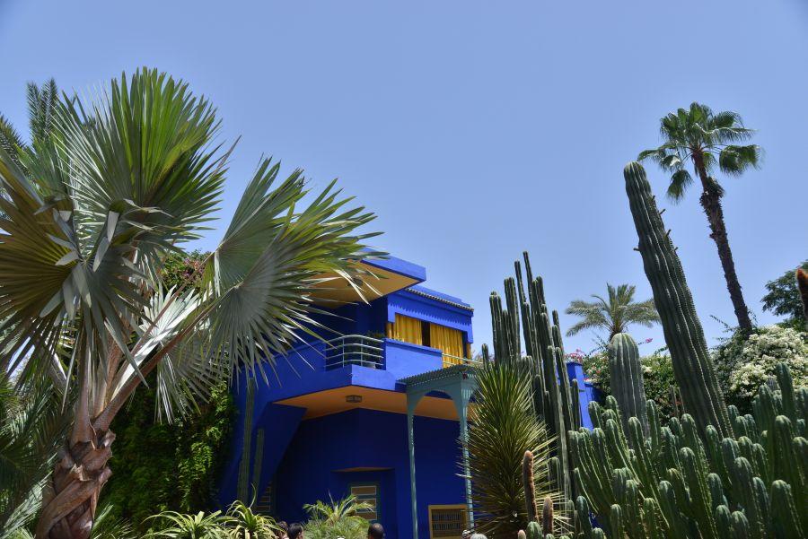 maroko, top atrakcie v maroku, dovolenka v maroku, poznavaci zajazd v maroku, satur, jardin majorelle