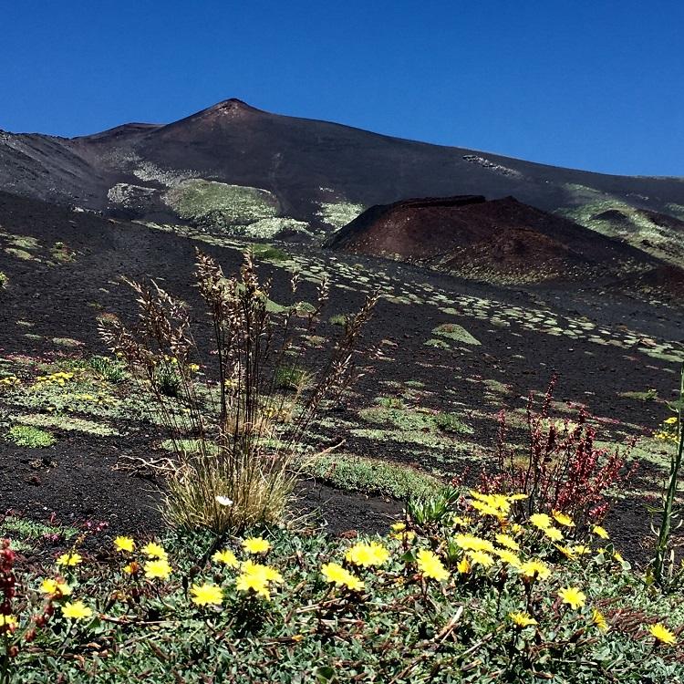sopka etna na sicilii