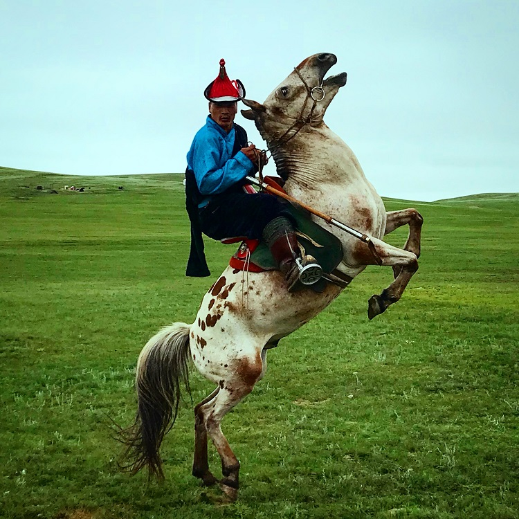 Jazdec na koni v mongolsku