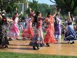 V rytmoch flamenca